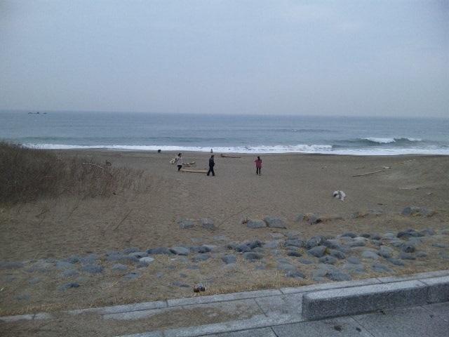 伊良湖岬までドライブ観光しました♪_c0316026_14055258.jpg