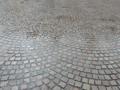 ベルギー・オランダの旅6~雨の中のブルージュ_e0326953_14163127.jpg