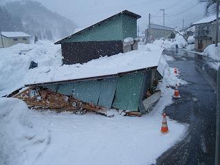 雪害_d0122374_1855630.jpg