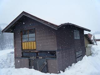 雪害_d0122374_1861216.jpg