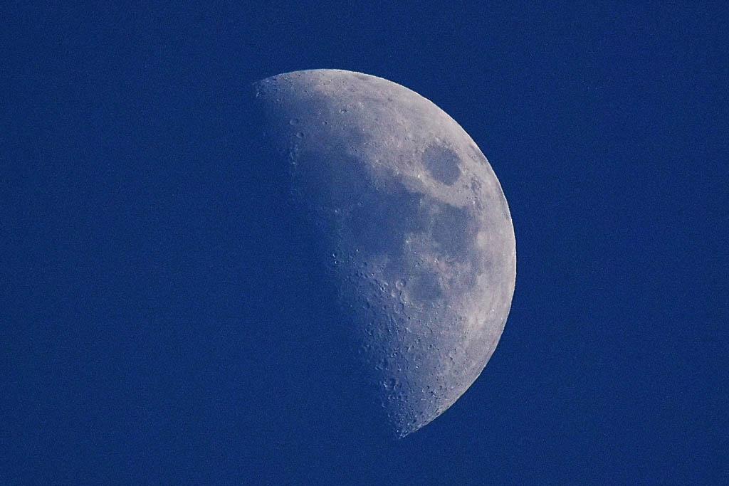 アリスイ・ペロペオ/イカル/オオアカハラ/梅カシラダカ/F-18ホーネット/上弦の月/太陽面_b0024798_17351035.jpg