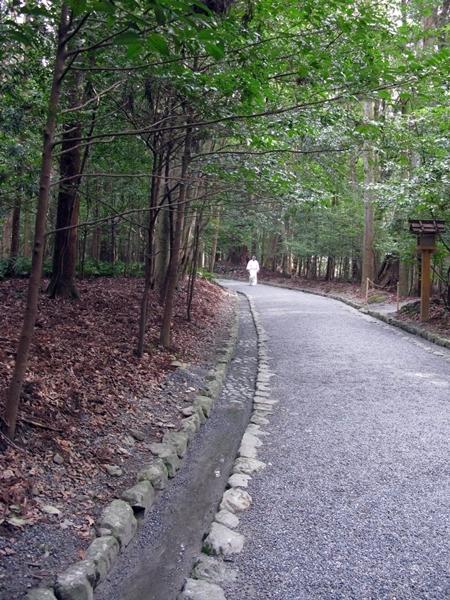 寒中・稲荷めぐりで神宮の森へ!_f0129726_21545637.jpg