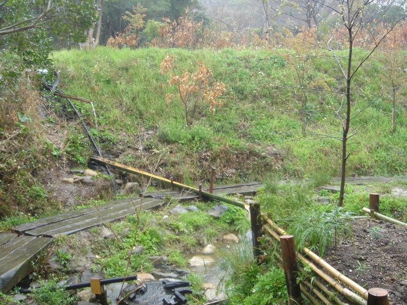 平成18年4月度運営委員会・・・うみべの森を育てる会_c0108460_00544652.jpg