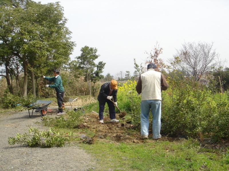 せんなん里海公園内に再植樹・・・うみべの森を育てる会_c0108460_13280053.jpg