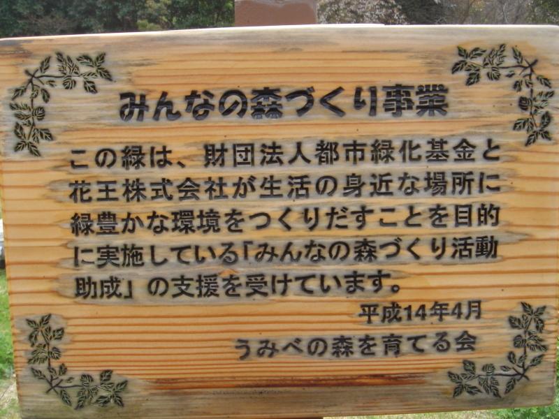 せんなん里海公園内に再植樹・・・うみべの森を育てる会_c0108460_13280173.jpg