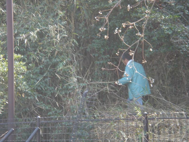せんなん里海公園内各所へ植樹・・・うみべの森を育てる会_c0108460_21242429.jpg