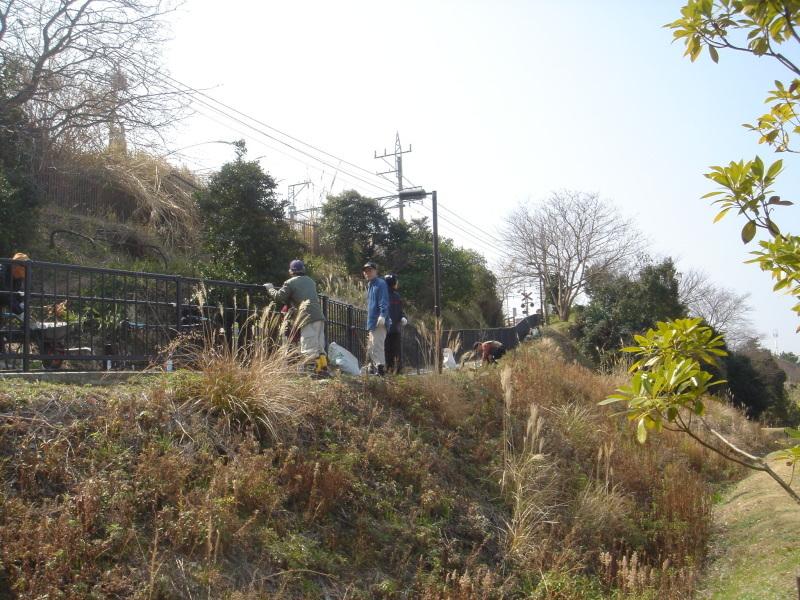 せんなん里海公園内各所へ植樹・・・うみべの森を育てる会_c0108460_21242443.jpg