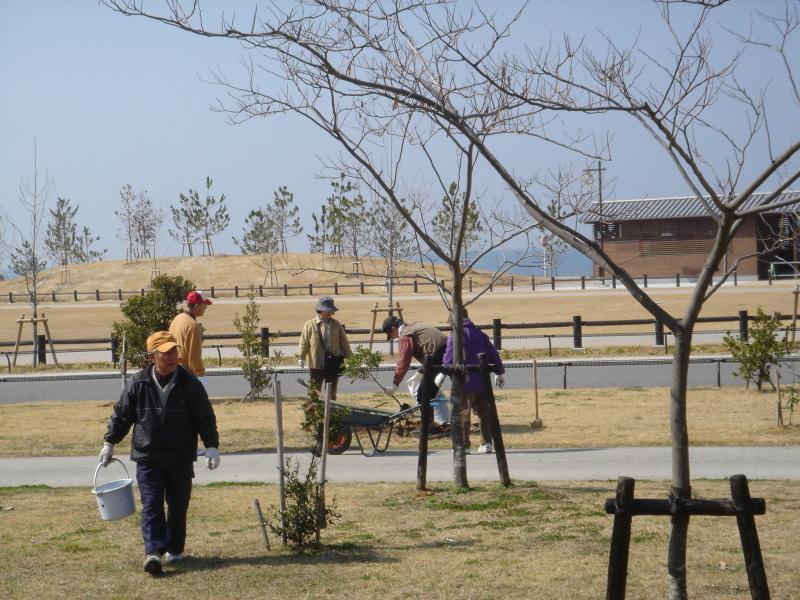 せんなん里海公園内各所へ植樹・・・うみべの森を育てる会_c0108460_21242585.jpg