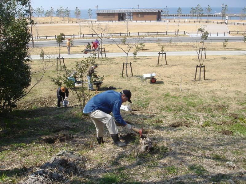 せんなん里海公園内各所へ植樹・・・うみべの森を育てる会_c0108460_21242589.jpg