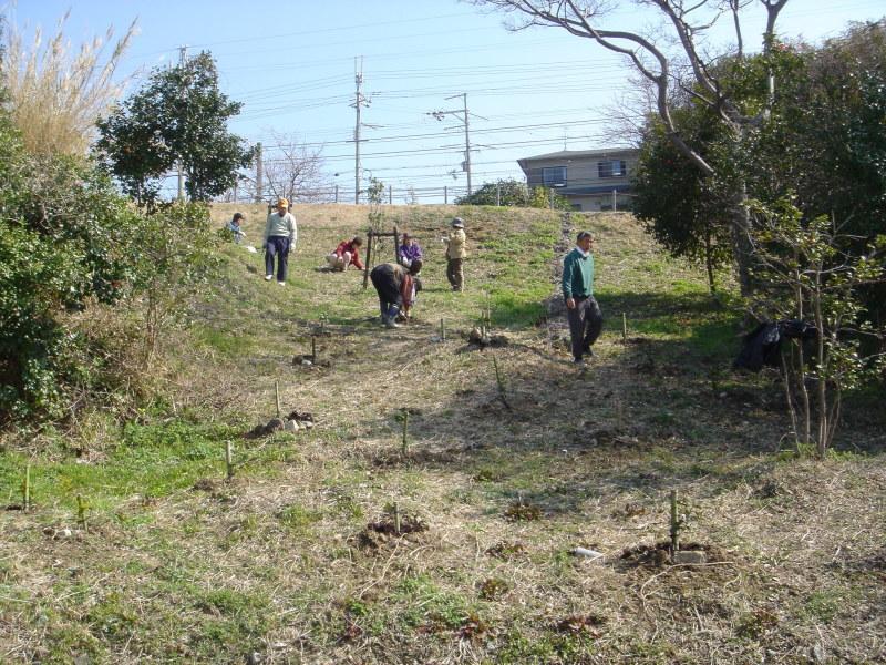 せんなん里海公園内各所へ植樹・・・うみべの森を育てる会_c0108460_21311370.jpg