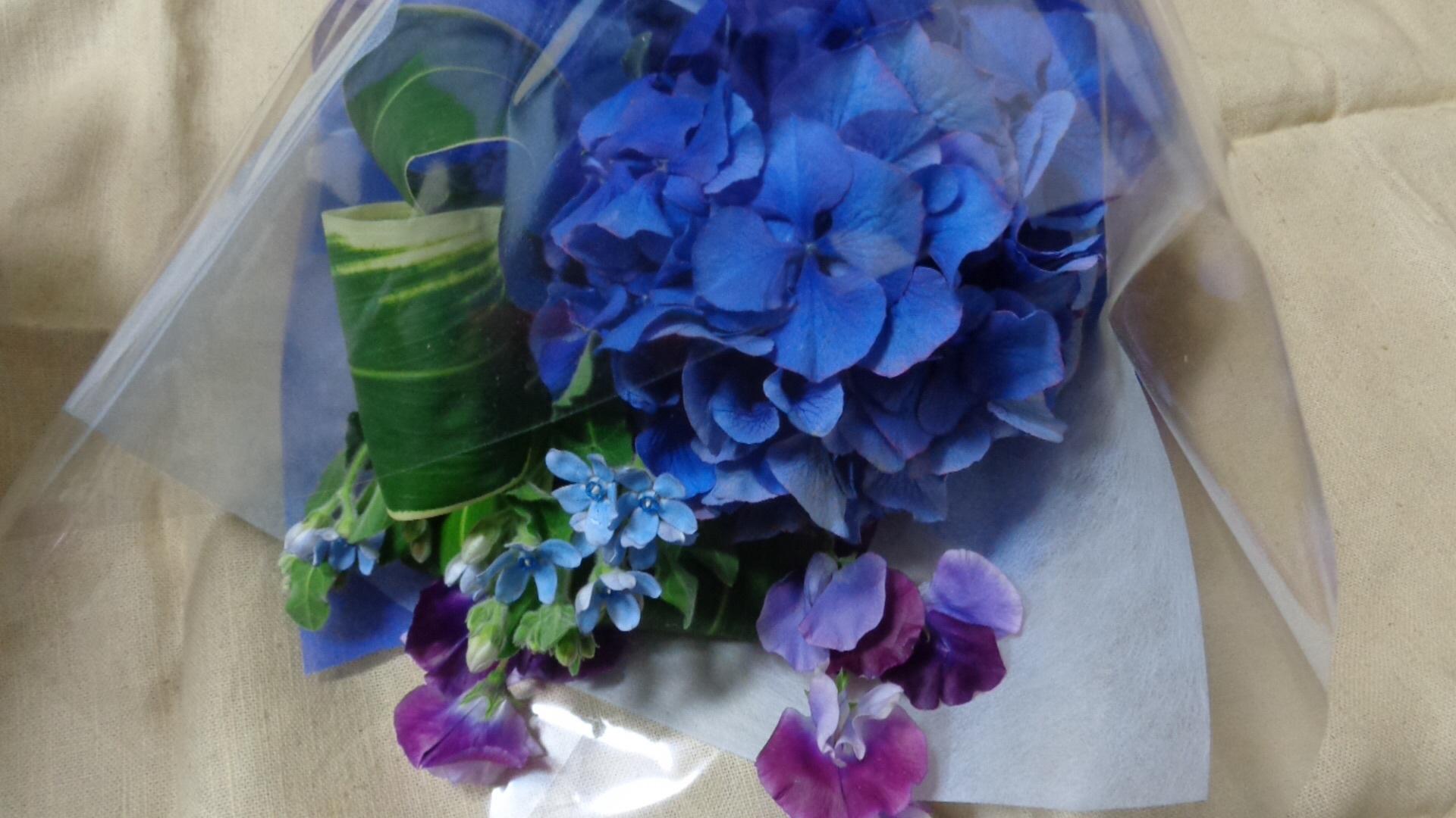 青い花束_a0025572_23544046.jpg