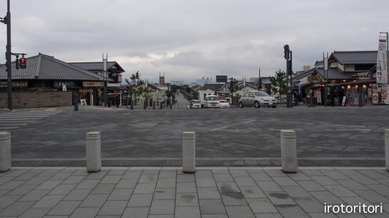 旅日記 その6  (ハクセキレイ)  2015/01/26_d0146592_026950.jpg