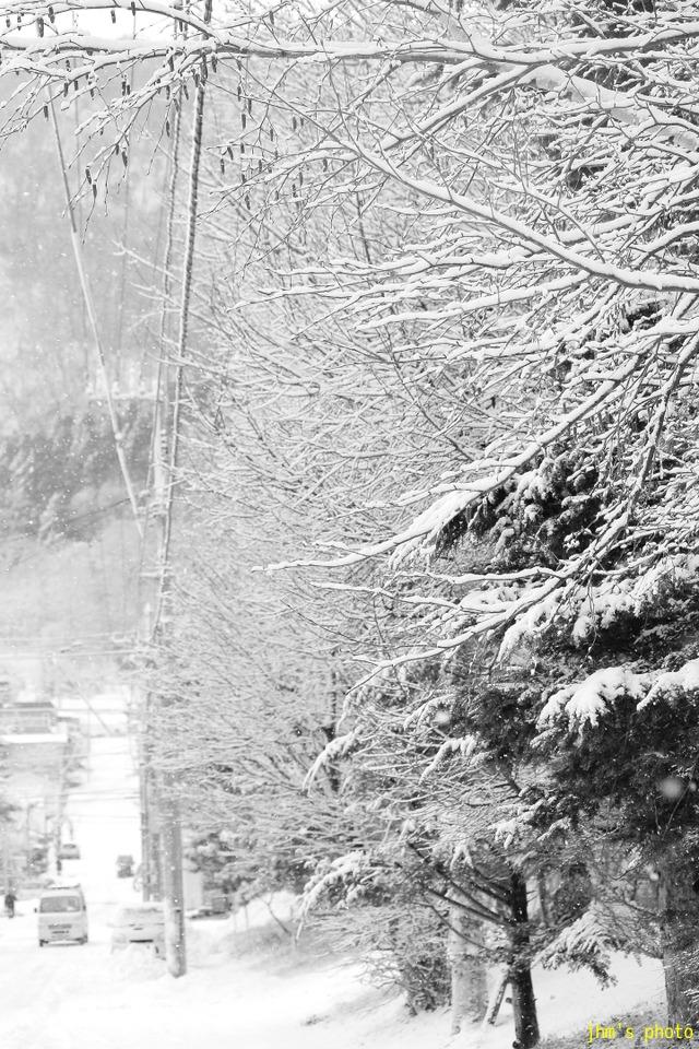 冬の重たい風景たち_a0158797_23373013.jpg