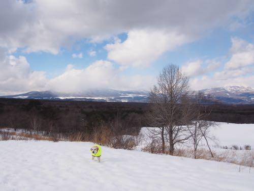 雪山にハイキング_e0192217_67337.jpg