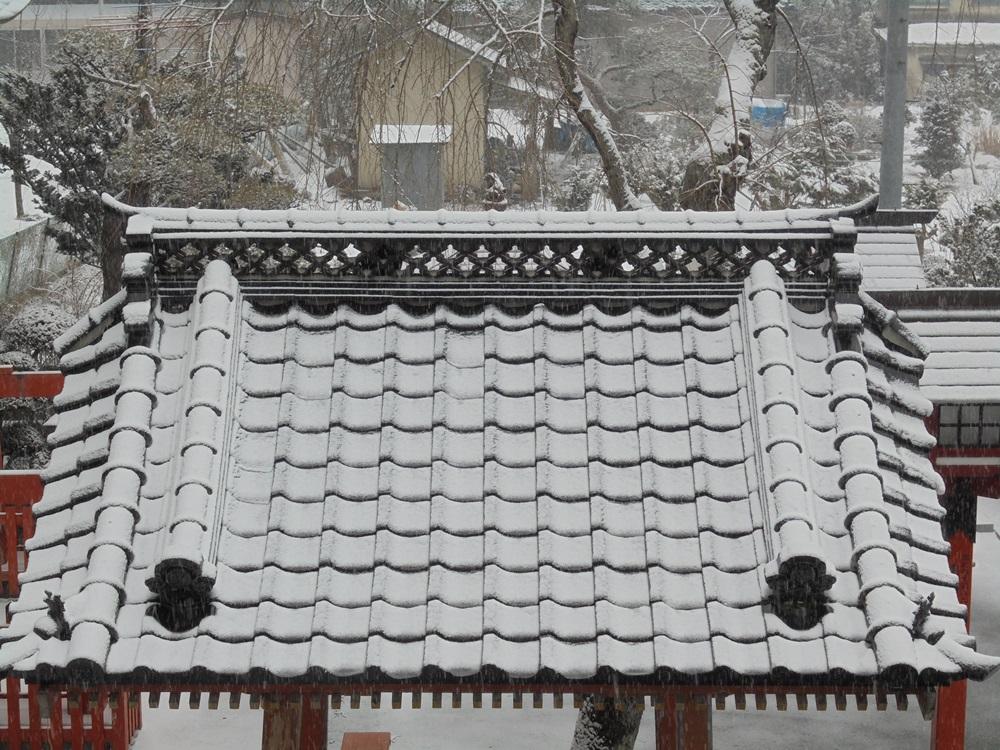 大雪注意報_c0111229_17491647.jpg