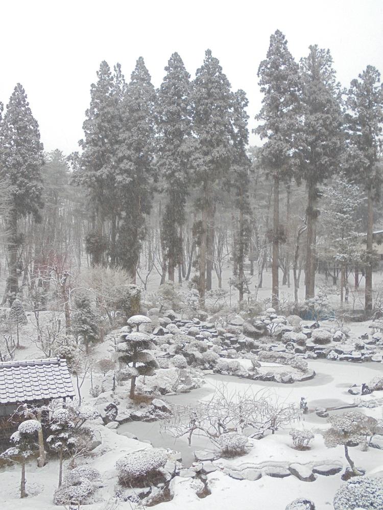 大雪注意報_c0111229_17493381.jpg