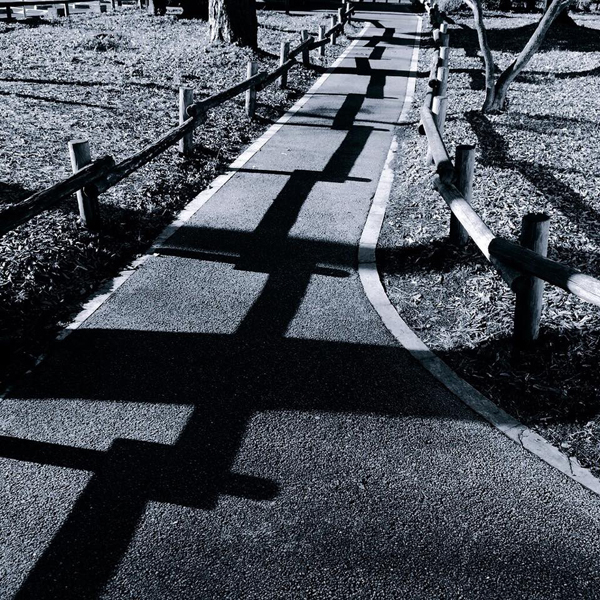 井の頭恩賜公園 / iPhone 6_c0334533_10090051.jpg