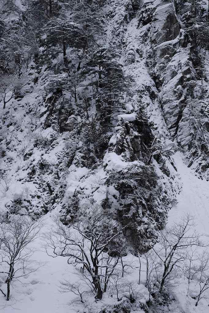 風雪_f0050534_08154875.jpg