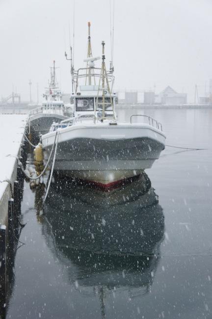 港に降る雪_d0001843_22232710.jpg
