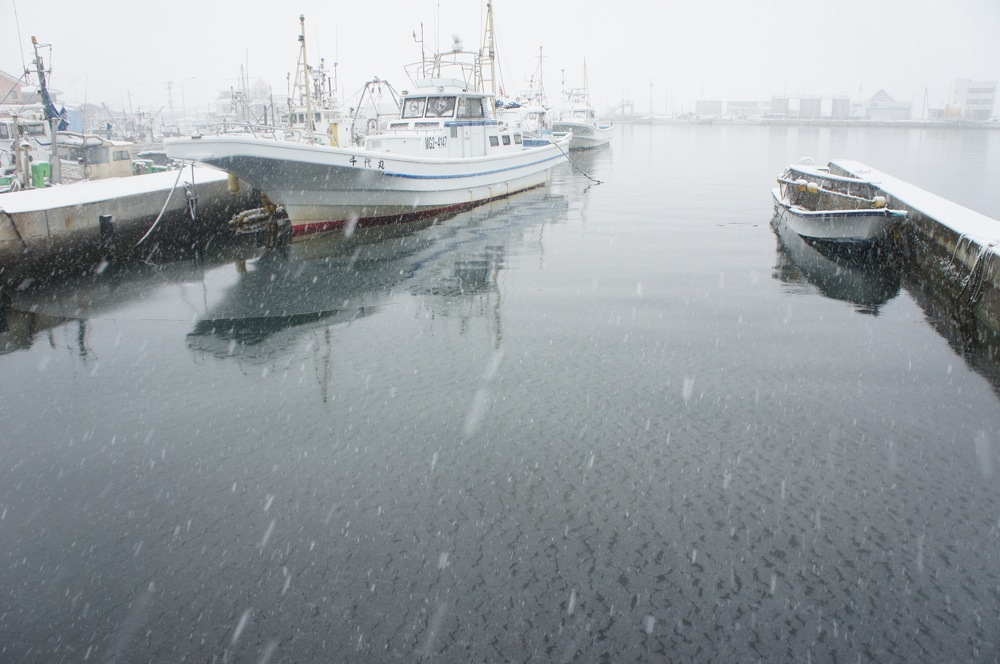 港に降る雪_d0001843_2228921.jpg