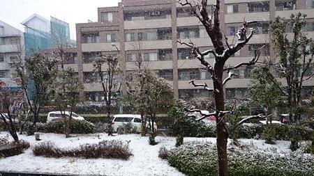 雪の日のキャンペーン♪_d0051146_20491425.jpg