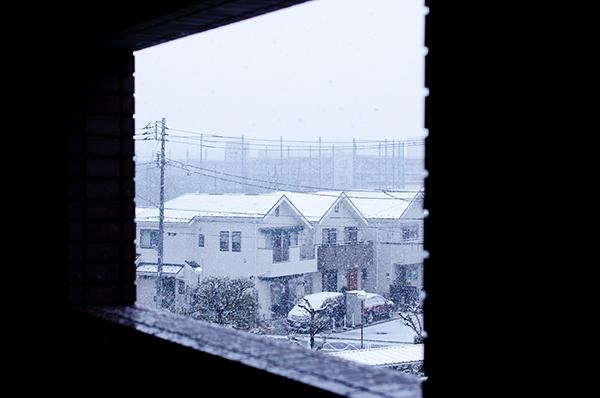雪とジミー・ページとマフィン_a0003650_23224973.jpg
