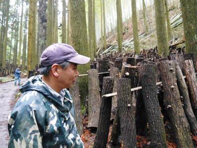 原木しいたけ 森の旨みを詰め込んで大好評発売中!!_a0254656_18134611.jpg