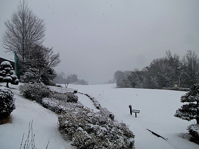 1月30日 降雪 クローズのお知らせ_f0096067_10364337.jpg