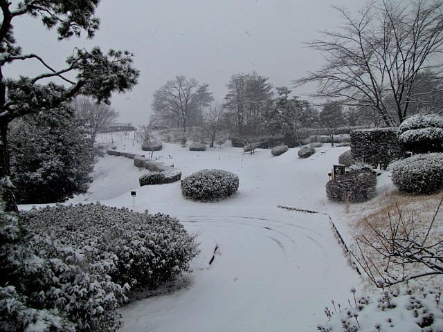 1月30日 降雪 クローズのお知らせ_f0096067_10365654.jpg