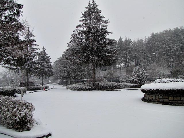 1月30日 降雪 クローズのお知らせ_f0096067_10374836.jpg