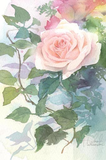 薔薇 水彩画_f0176370_1647486.jpg