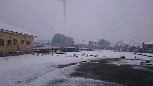 雪だ!_e0040673_1181560.jpg
