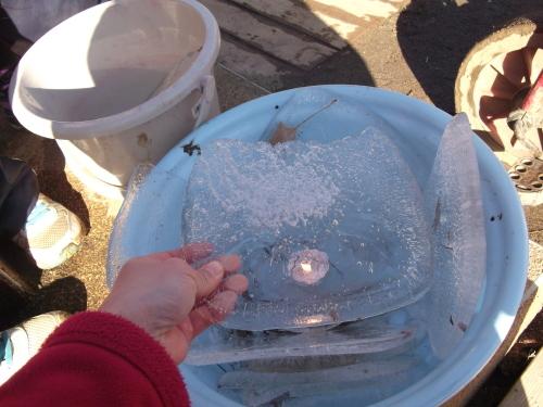 氷とろうそくとおめでとう_f0334882_10414522.jpg