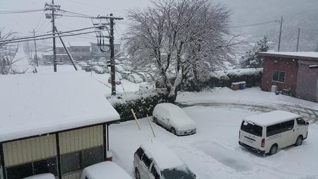 3週連続の雪です。_c0193896_11103915.jpg