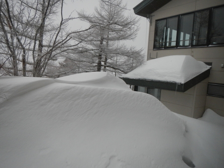 上雪です_e0120896_22184937.jpg