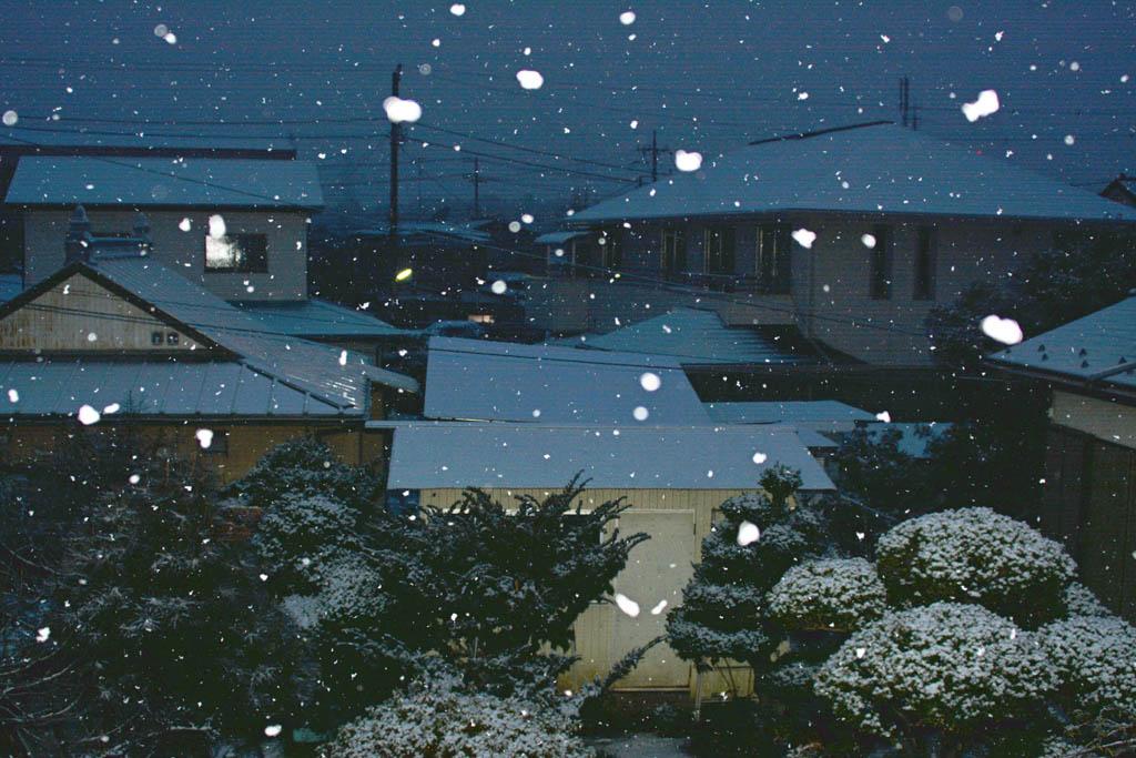 火災/積雪と鳥達(イカル、ジョウビタキ雌、ダイサギ)/シロハラ/太陽面/月とラブジョイ彗星_b0024798_16265970.jpg