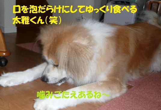 f0121712_7323948.jpg