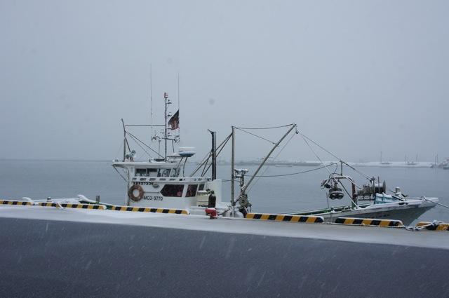 雪の港_f0143119_2363296.jpg