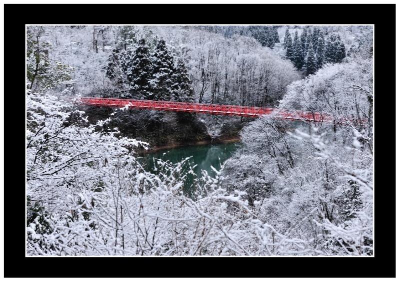 森林公園冬の景_c0220824_17462968.jpg