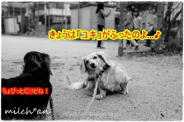 b0115642_18435158.jpg