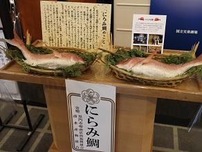 道行初音旅の謎と福すしの大阪寿司、それに睨み鯛_c0030645_2126954.jpg