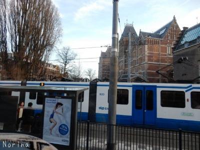 ベルギー・オランダの旅7~冬の花市場_e0326953_21434669.jpg