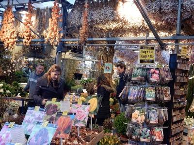 ベルギー・オランダの旅7~冬の花市場_e0326953_21593538.jpg