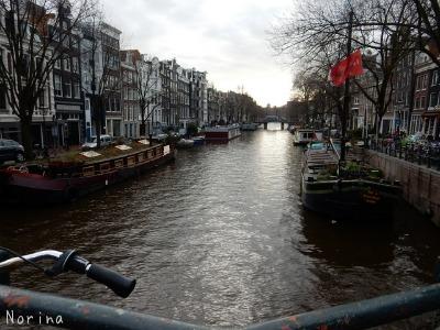 ベルギー・オランダの旅7~冬の花市場_e0326953_2214937.jpg