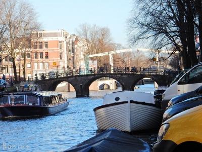 ベルギー・オランダの旅7~冬の花市場_e0326953_22332574.jpg