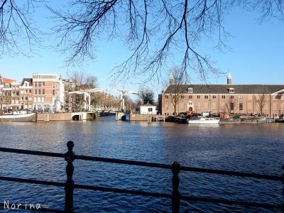 ベルギー・オランダの旅7~冬の花市場_e0326953_22335513.jpg