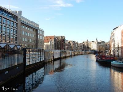 ベルギー・オランダの旅7~冬の花市場_e0326953_226324.jpg