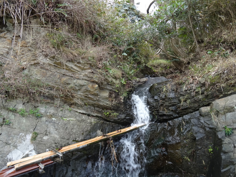 うみべの森で薪作り(一人作業)_c0108460_16461260.jpg