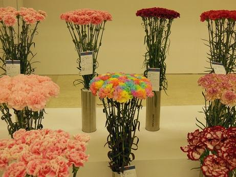 花の展覧会♪_d0135762_21545828.jpg