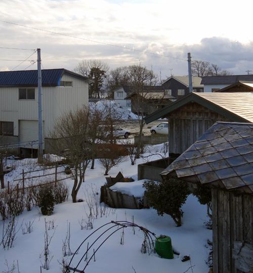ほわんと雪景色&岩木山&ヒヨドリ♪_a0136293_191057100.jpg